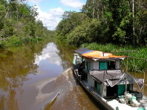 Sekonyer River, Malaysian Borneo by Rainforest Action Network @flickr