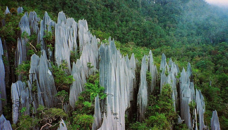 Gunung Mulu National Park: Vital for Environment, Science and Ecotourism in Malaysia