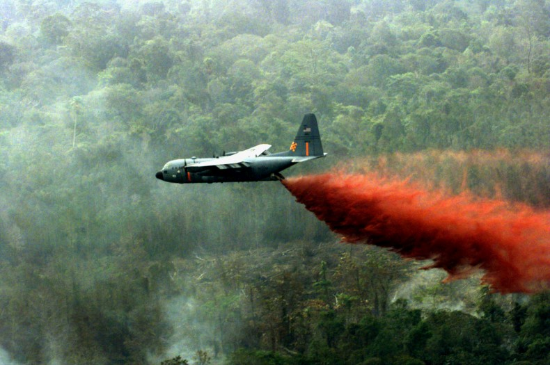Will Indonesia Change After This Year's Fires?