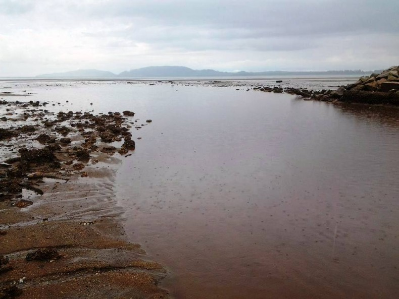 Waters off Kuantan may turn into a 'Dead Sea' after Bauxite Disaster