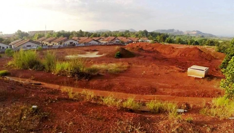 Bauxite-Ravaged Land in Pahang Could be Rehabilitated 'within Two Years'