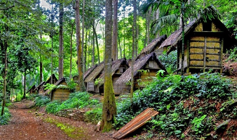 Orang Asli Boost Biodiversity with their Fruit Gardens