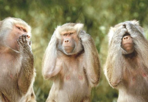 Seeking to Stop Corrupt Politicos Monkeying Around