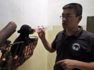 The center's CEO Wong Siew Te feeds Wawa from a bottle. Photo Credit: BSBCC
