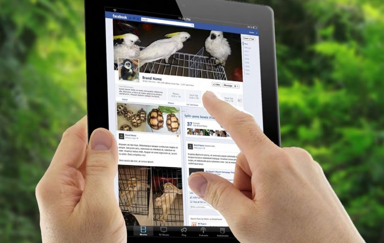 Just How Bad is Wildlife Trafficking on Facebook in Malaysia? Very Bad