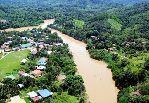 Animals be Damned, Locals Want a new Bridge in Kinabatangan