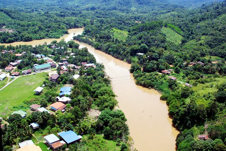 Animals be Damned, Locals Want a new Bridge in Kinabatangan