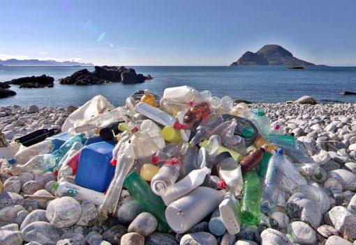 Perak and Johor will Ban Plastic and Polystyrene