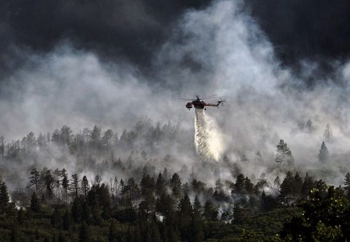 The Government vows to Get Tough on slash-and-burn Cultivators