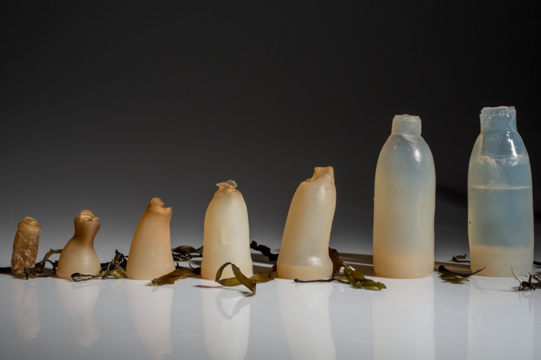 Here's a Thought: Biodegradable Water Bottles … made from Algae