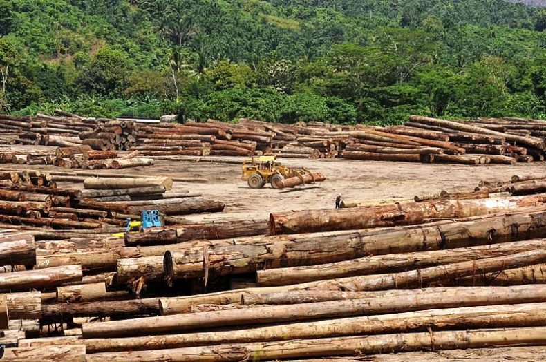 Ministry plans special Logging Areas
