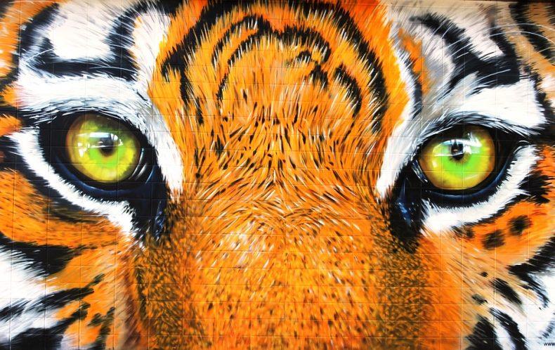 We must 'show Zero Tolerance' for Wildlife Crimes