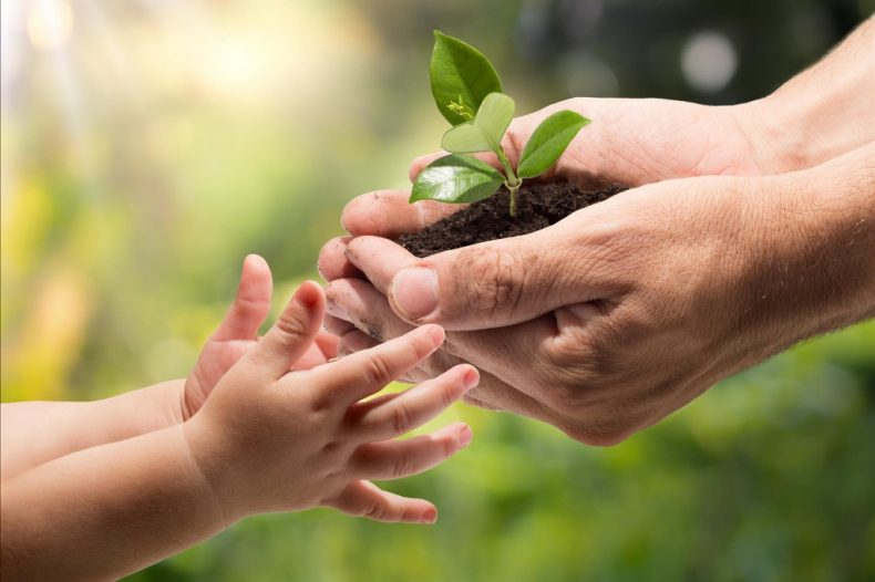 Helping Children to Grow Greener