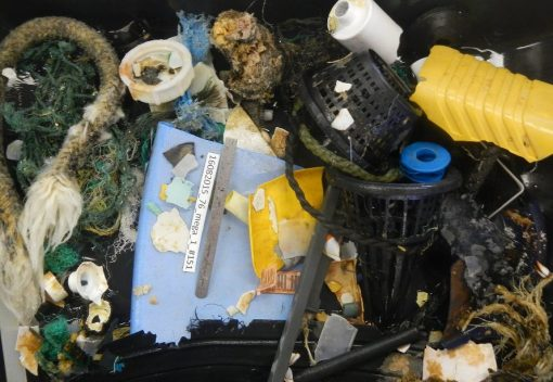 The Oceans of Trash are Worse than Thought … but Help is on the Way