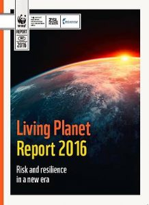 WWF's Living Planet Report 2016 has raised the alarm about the declining rates of wildlife populations worldwide. Photo Credit: WWF