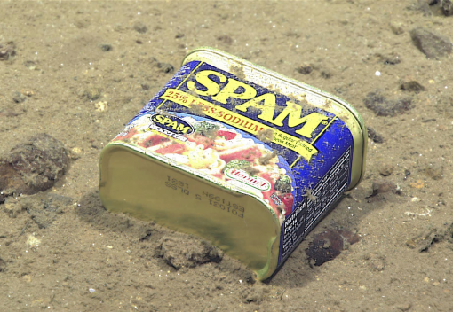 Earth's deepest Area is Heavily Polluted with Toxic Chemicals
