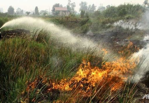 Tackling Indonesia's forest Fires at the Grassroots