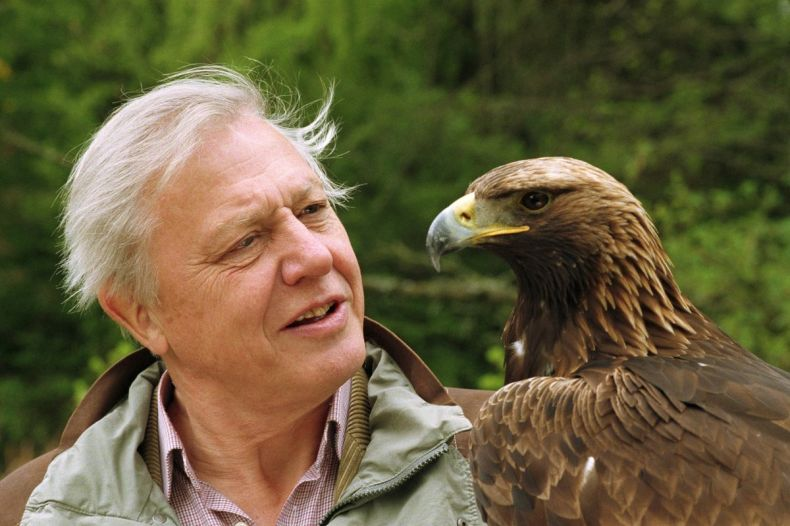 Cheers to Attenborough for joining Calls to scrap 'Bridge to Extinction'