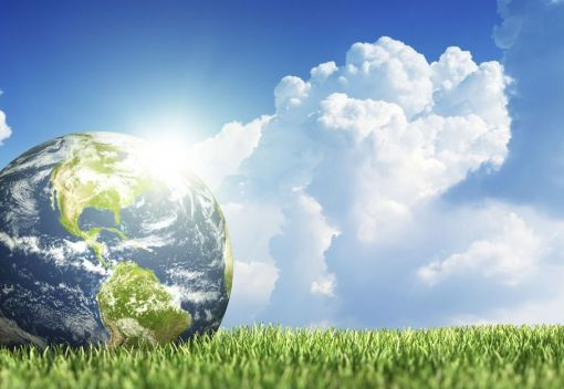 Let's turn Earth Day into Earth Year