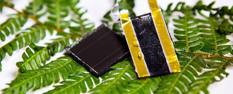 Bio-based Electrode could revolutionize Solar Energy Storage