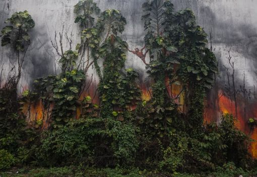 A Malaysia-based Artist takes on Slash and Burn cultivation in Indonesia