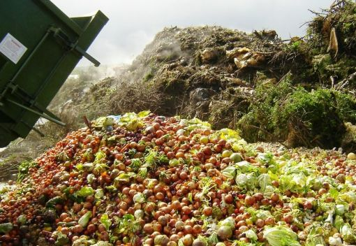 Food Waste has reached Stunning Proportions in Penang