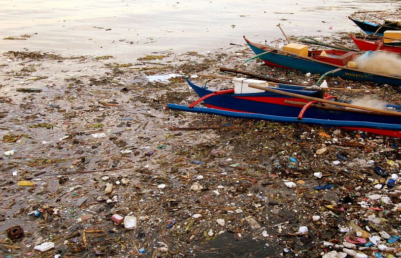 Some Rivers in Sarawak are 'Dead'