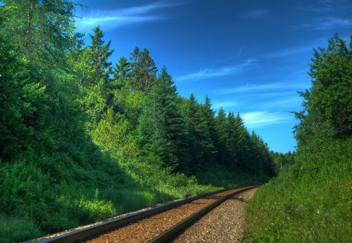 Mitigating the Environmental Impacts of the East Coast Rail Link