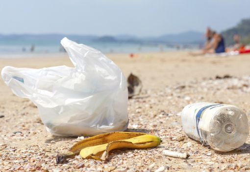 Let's 'Get Serious' about Plastic Bags