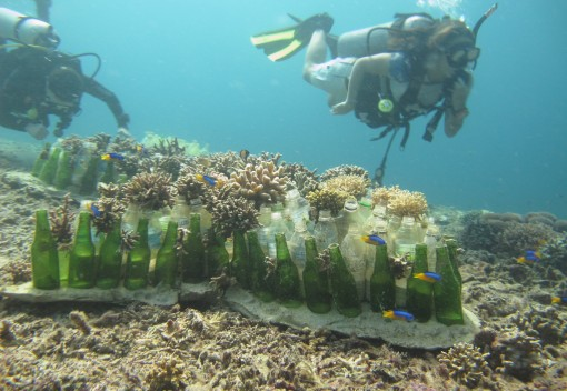 Malaysia's Coral Reefs are Being Bombed – Learn how One Nonprofit Rebuilds Them