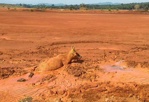 Malaysia's Bauxite Mining Makes the News – But not the Disasters Behind It