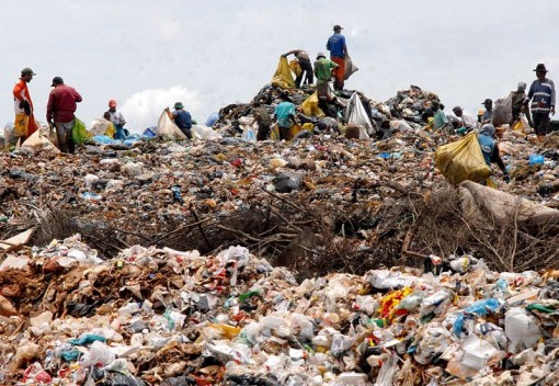 Plastic-Eating Bacteria Could Help Revolutionize Recycling