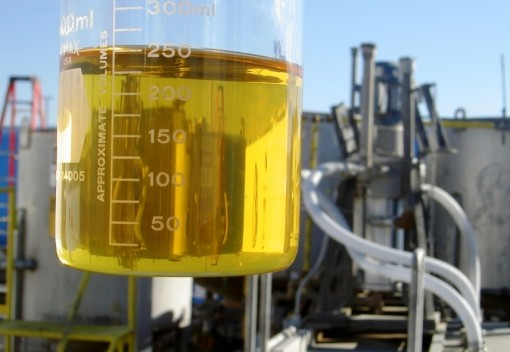 Malaysia's Biodiesel Conundrum