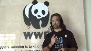WWF-Malaysia's executive director Dr Dionysus Sharma has called on Malaysian wildlife officials to step up their protection efforts. Photo Credit: WWF-Malaysia via YouTube