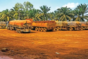 Trucks are loaded with bauxite in Kuantan. Photo Credit: Borneo Bulletin