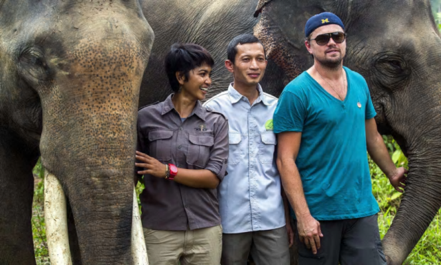 Leonardo DiCaprio lands in hot water for speaking out against Palm Oil