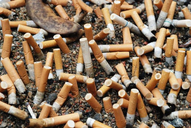 Cigarette Butts can be used to build Homes