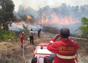 ndonesian firefighters trying to contain forest fire in Kalimantan. Photo Credit: Wikimedia Commons
