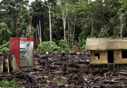 Banking on the Death of Forests