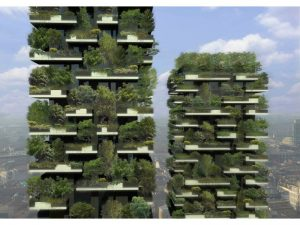 Going green vertically is the only option in densely populated cities. Photo Credit: Flickr
