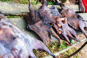 Bushmeat on sale looks enticing to people who consider it a delicacy, but the trade comes at a heavy price to wildlife. Photo Credit: Flickr