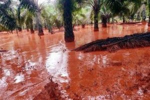 Water in Kuantan turned a toxic red last year as a result of wanton mining activities. Photo Credit: GERAM