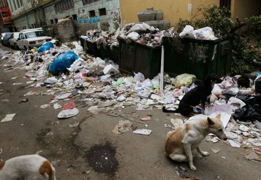 Littering and Waste are Threats to our Health and our Environment