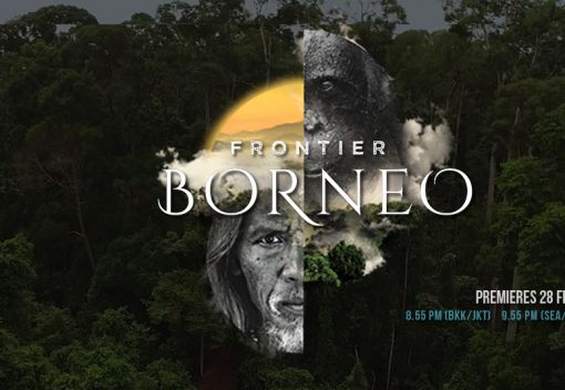 Showcasing the Wonders of Borneo