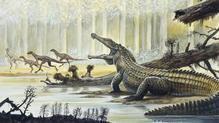 We're pushing Earth's climate back to the Bygone era of the Triassic