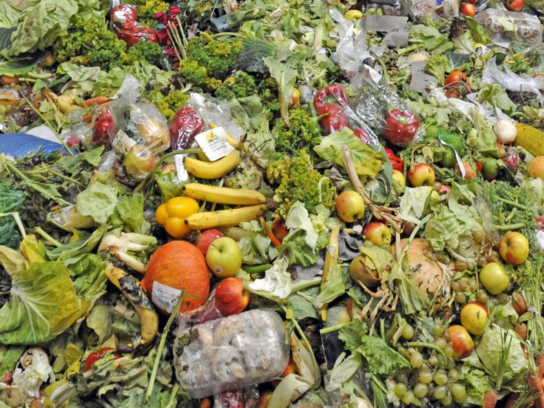 Food Waste is a Grave Concern