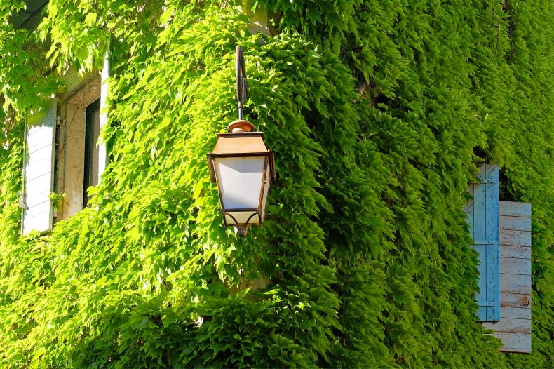 New Buildings 'should have' More Green Spaces