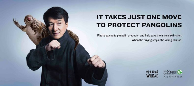 Kudos to Jackie Chan for being Ready to Rumble for Pangolins