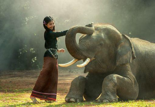 'Teach children' to Love Animals