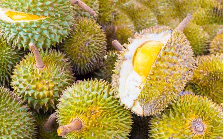Durian Yields in Kuantan remain Low. The Culprit: Bauxite Mining